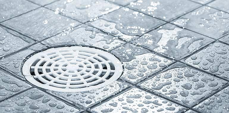 clogged drain bellevue, wa